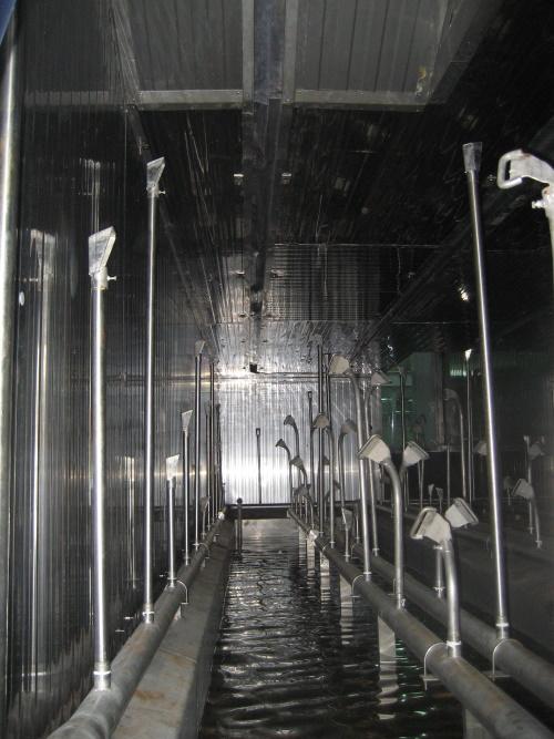 Escalde vertical en túnel de agua